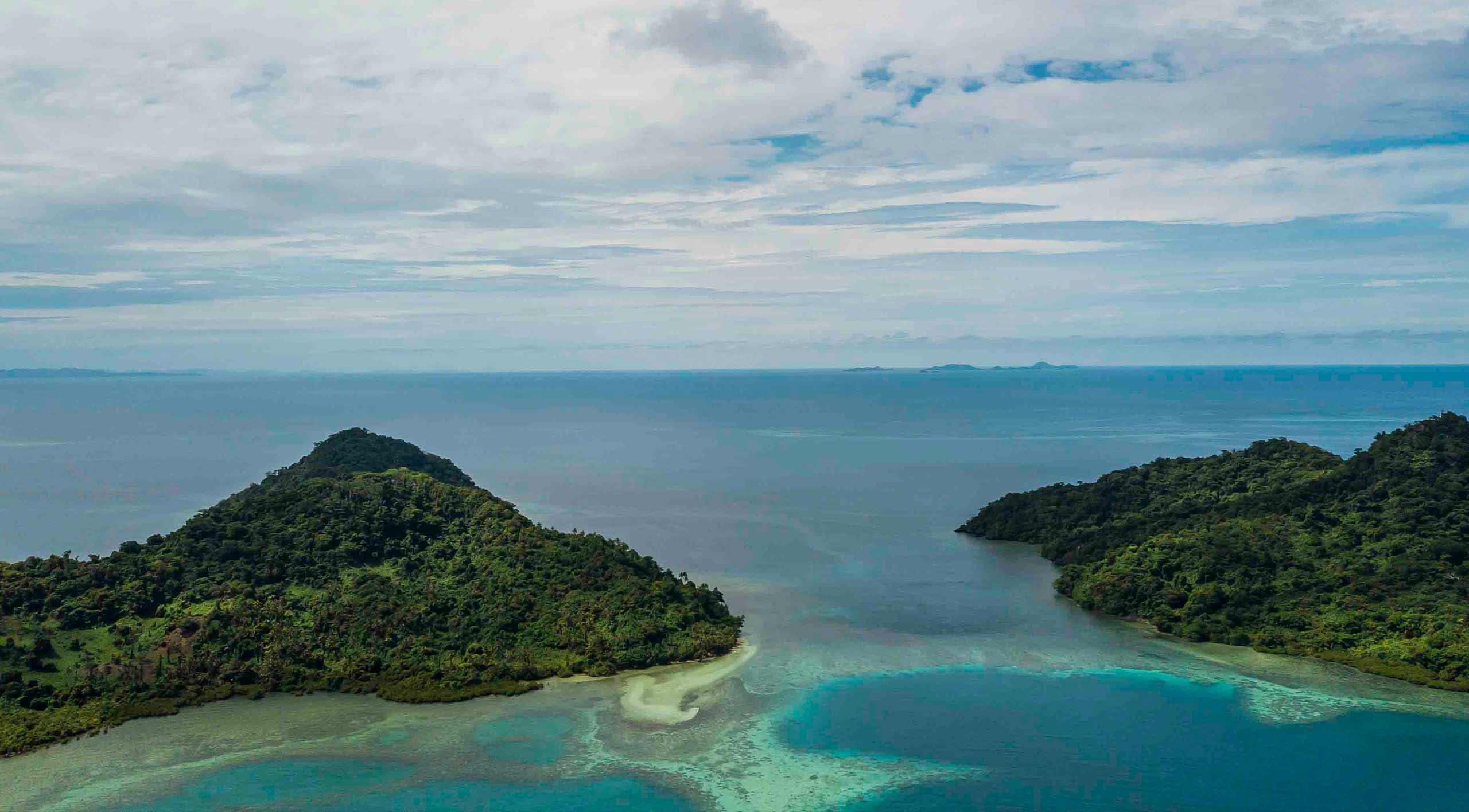 NatureFiji, GII,Green Iguana, Moko Fiji